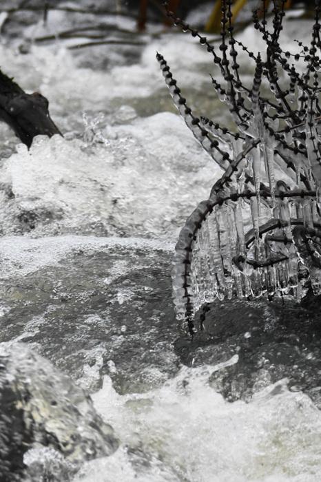 photoblog image Is - Ice
