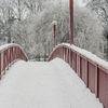 Bro - Bridge