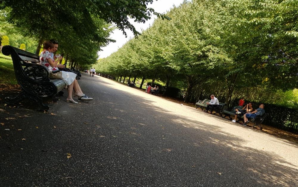 photoblog image Njuter av skuggan - Enjoying the shade