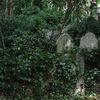 Gravar - Graves