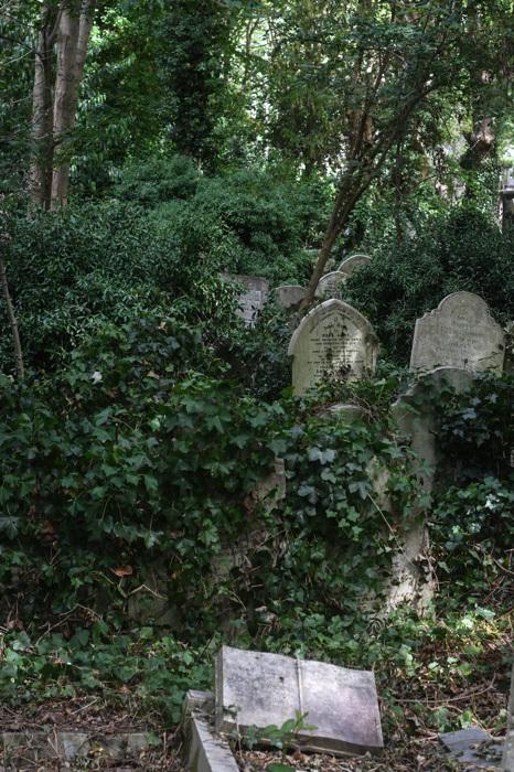 photoblog image Gravar - Graves