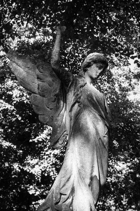 """photoblog image Ã""""ngel - Angel"""