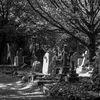 Gravstenar - Headstones