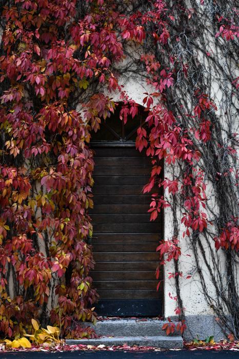 photoblog image Dörr - Door