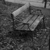 Bänk - Bench