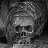 Skalle - Skull
