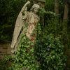 Staty - Statue