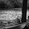 BÃ¥t - Boat