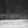Fiskare - Fisherman