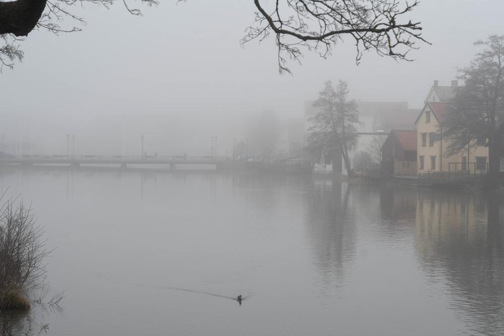 photoblog image Dimmigt - Misty