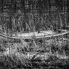 Kanot - Canoe