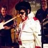 Ladies And Gentlemen, Elvis Is IN The Building!