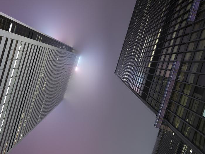 photoblog image Looking Up