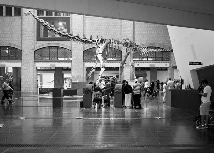 photoblog image At the ROM