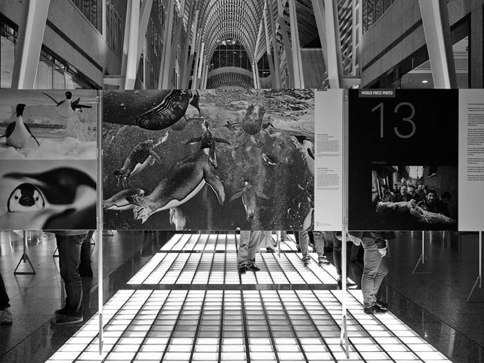 photoblog image World Press Photo Awards 2013