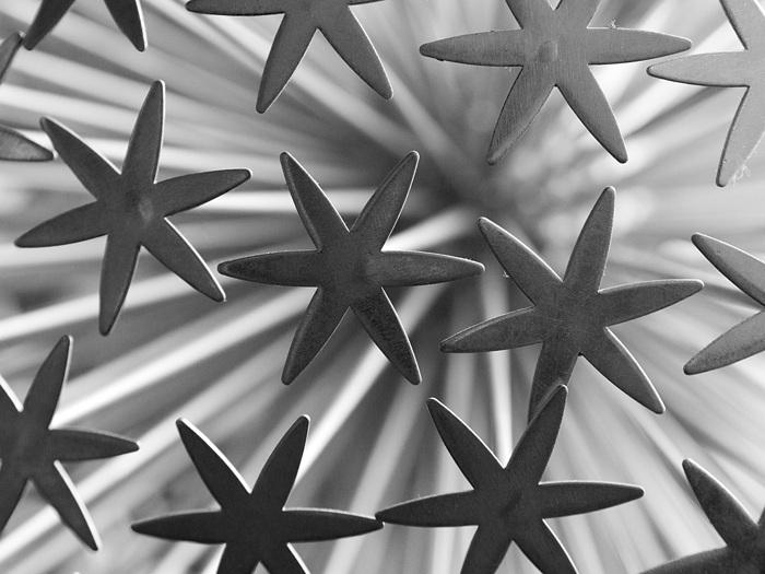 photoblog image Shooting Stars