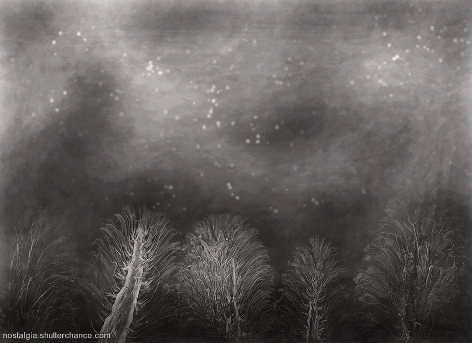 photoblog image Zyryality: In The Darkness Of The Southern Night