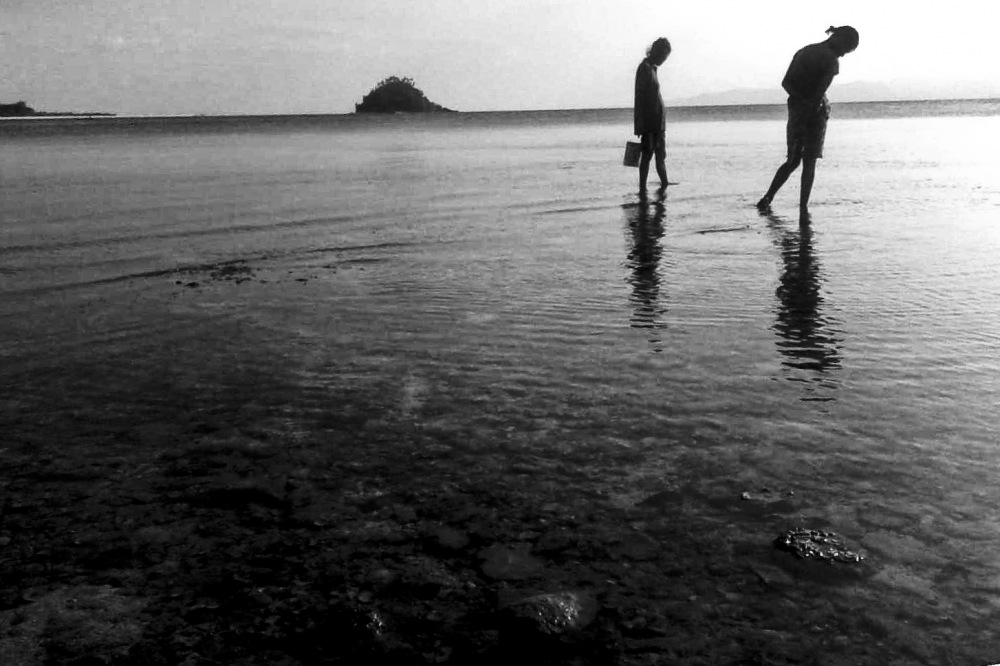 photoblog image Seeking shells by the seashore