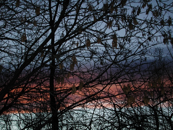 photoblog image sunset silhouette