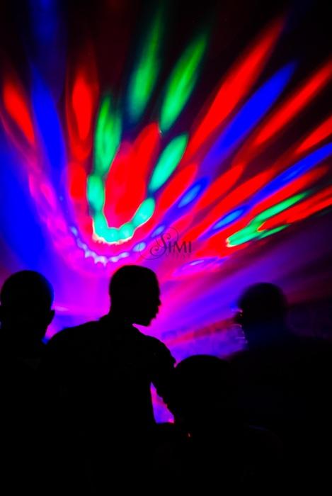 photoblog image 20110417-dsc 6234.jpg