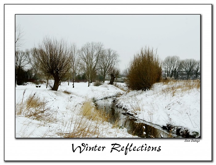 photoblog image Winter Reflections