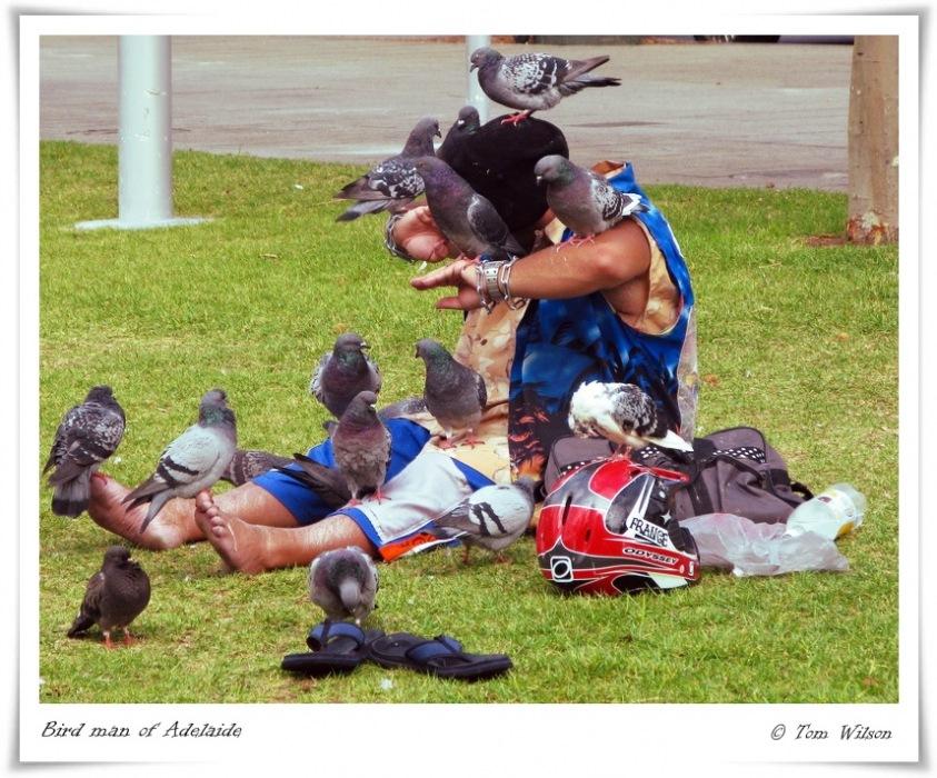 photoblog image Bird man of Adelaide