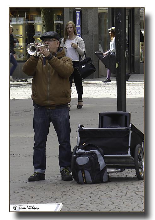 photoblog image Trumpeter