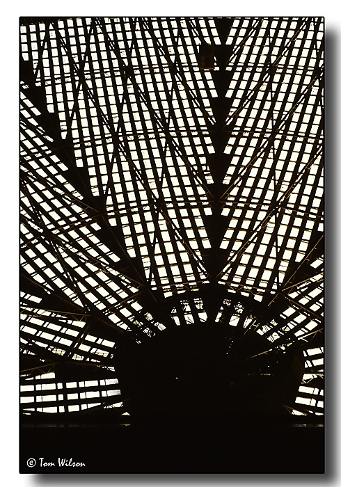 photoblog image Roof of the Houston Astrodome
