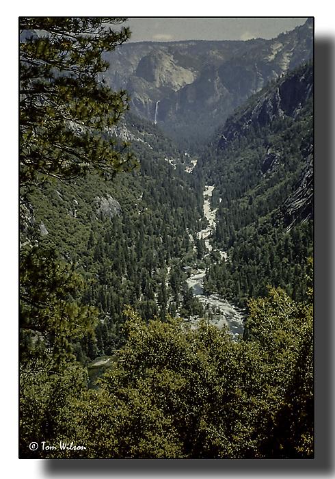 photoblog image Yosemite National Park