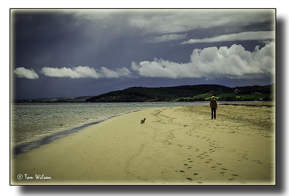 photoblog image Walking the dog