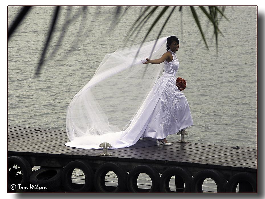 photoblog image The Bride