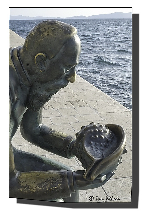 photoblog image Spiro Brusina and his conch shell