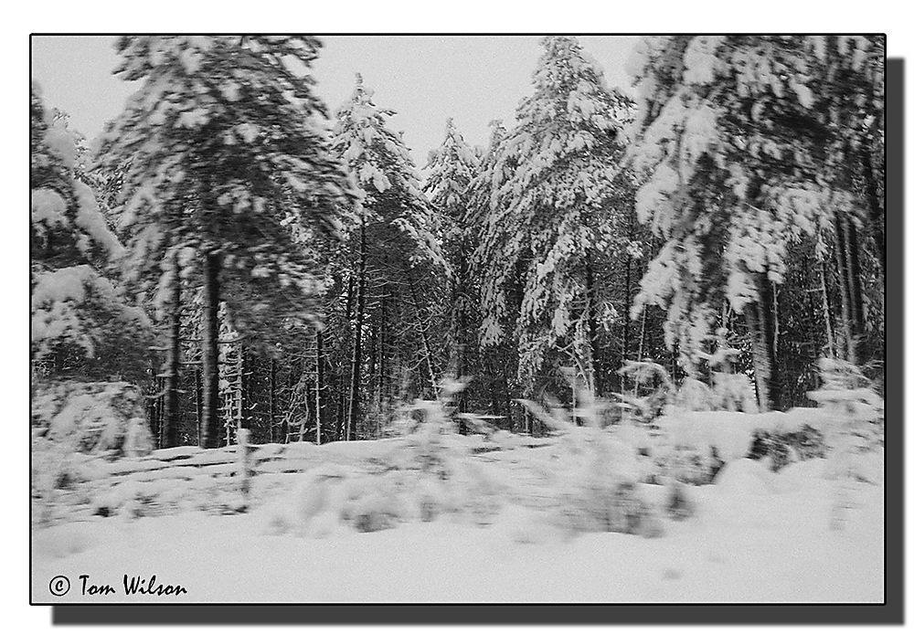 photoblog image En Route