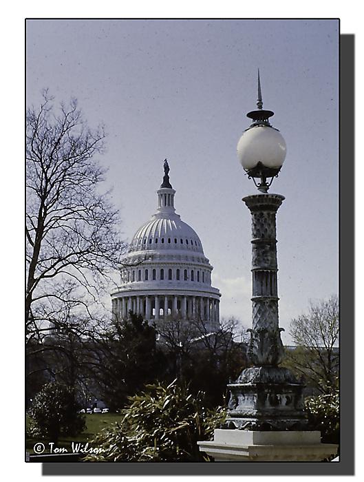 photoblog image Capitol
