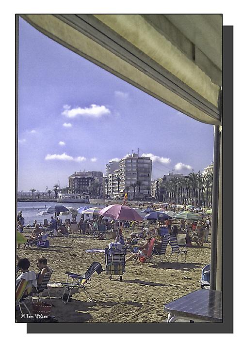 photoblog image November Sunshine