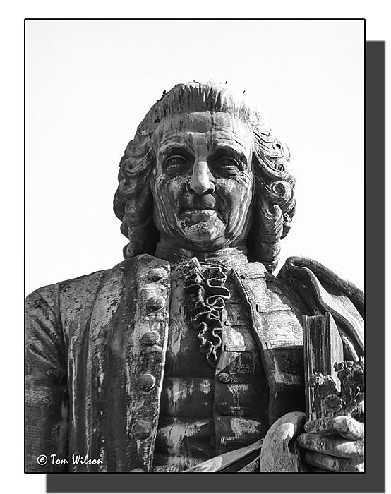 photoblog image Linnaeus