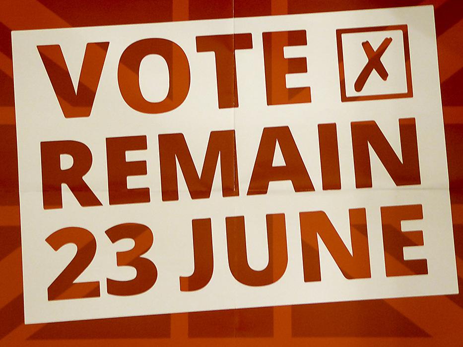 photoblog image Vote Remain