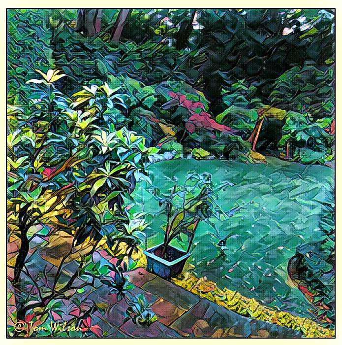 photoblog image Garden View