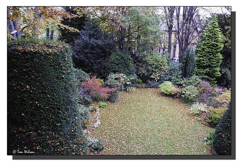 photoblog image Autumn garden