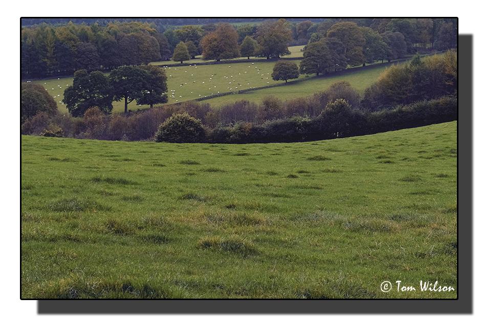photoblog image Derbyshire landscape
