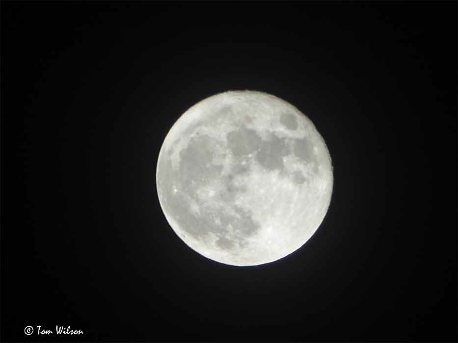 photoblog image December Moon