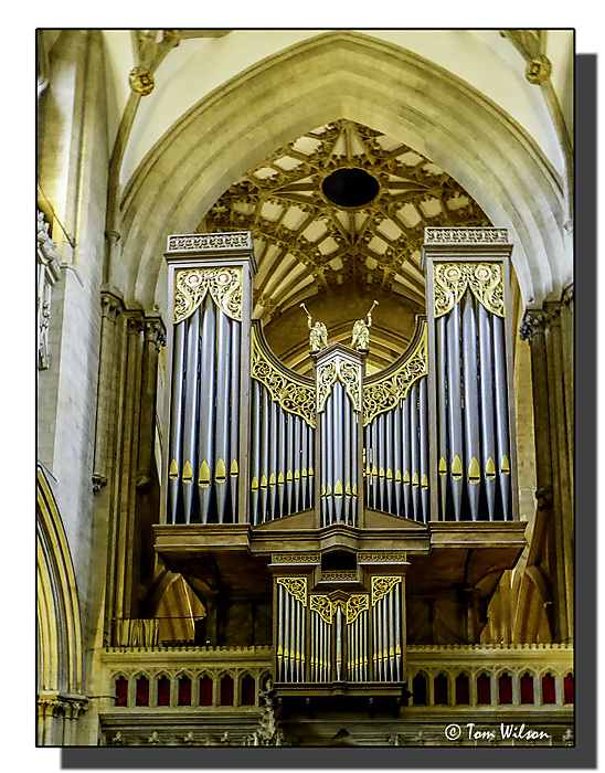 photoblog image Wells Cathedral - the organ