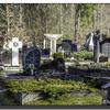 Antakalnis Cemetery 5