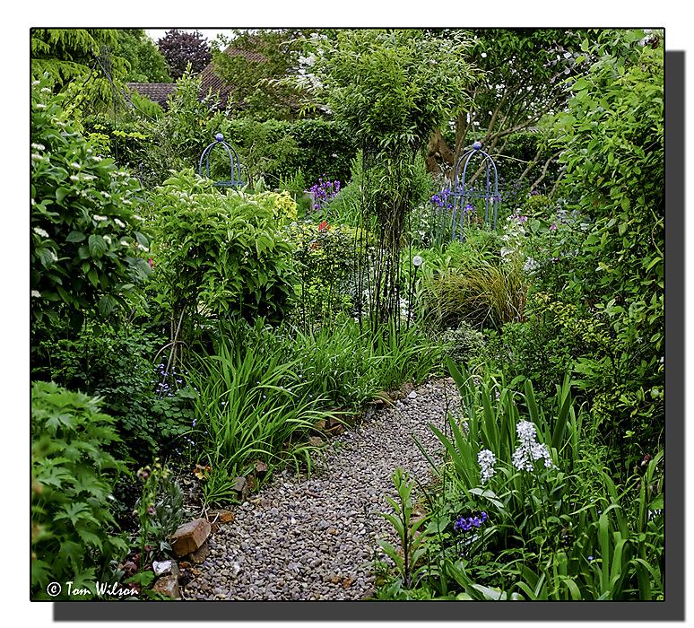 photoblog image In a friend's garden