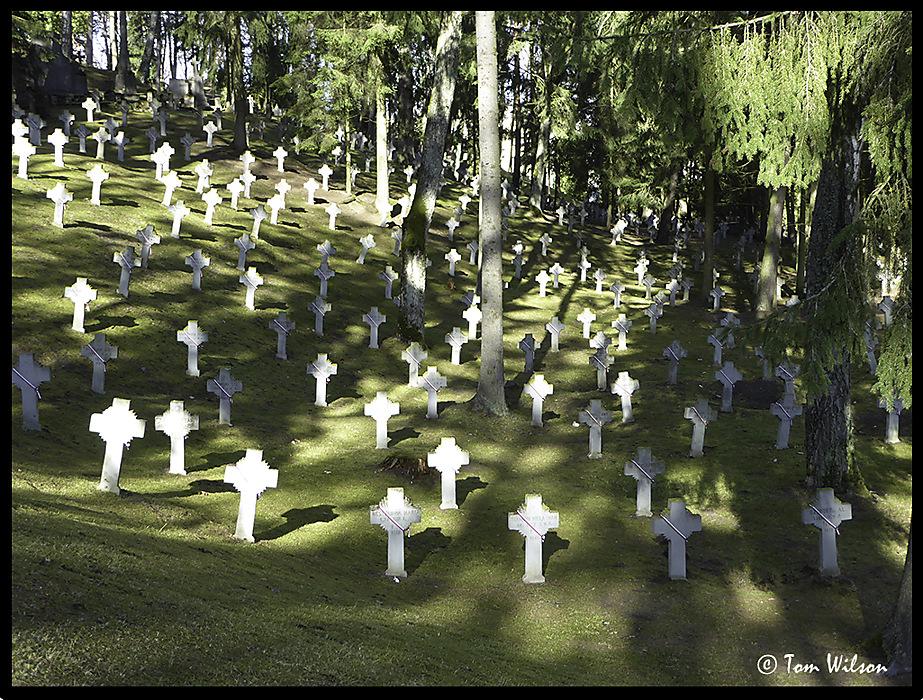 photoblog image Antakalnis Cemetery 6