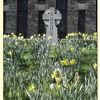 Phonne pics - Memorial