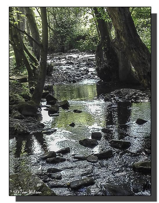 photoblog image Phone pics - Porter Brook