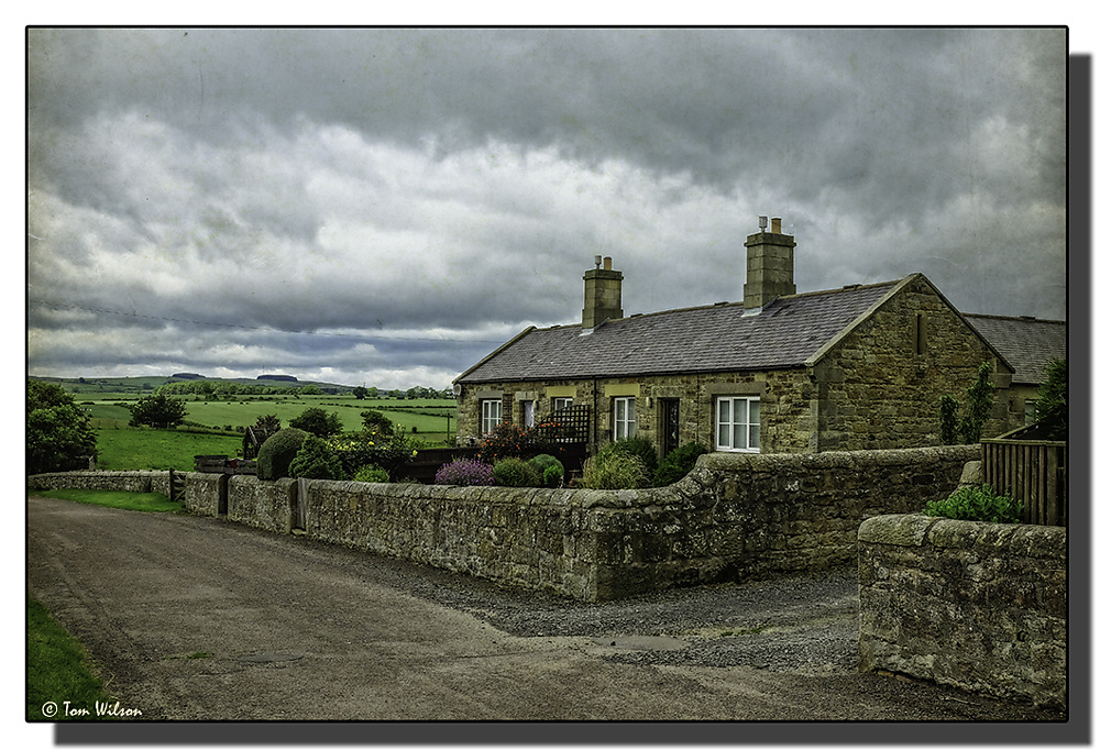 photoblog image Northumberland cottages