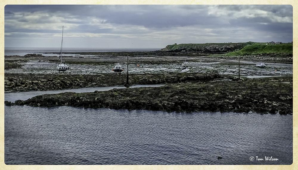 photoblog image Low tide