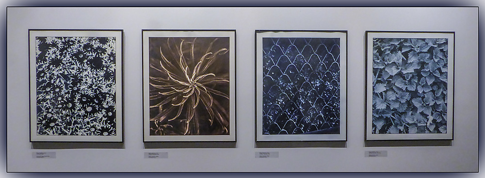 photoblog image Siauliai - Museum of Photography